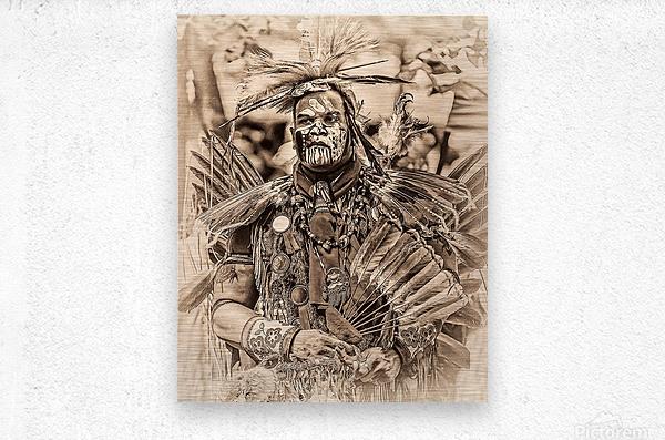 Native American 2  Metal print