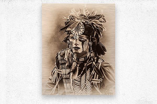 Native American 4  Metal print