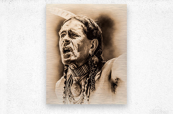 Native American 15  Metal print