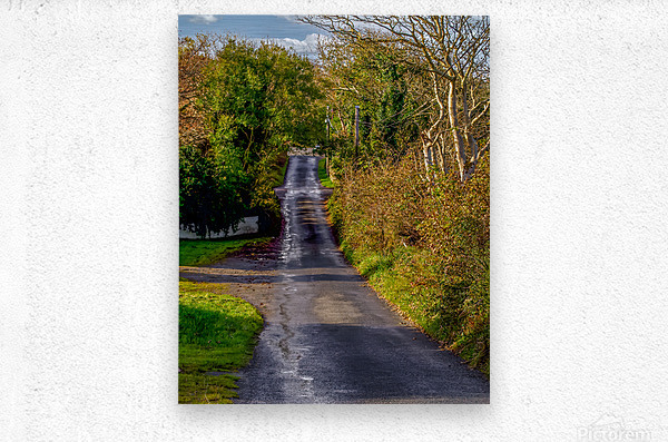 Donegal Byway  Metal print