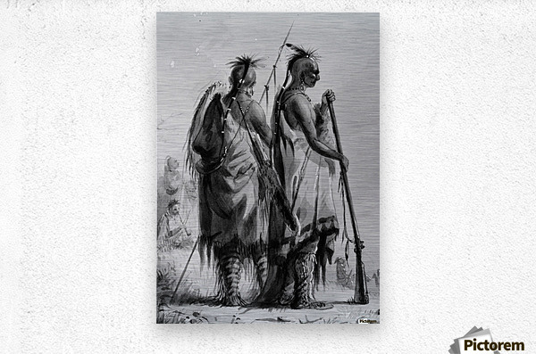 Plains Indian Shields  Metal print
