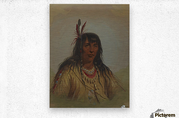 Bannock Indian  Metal print