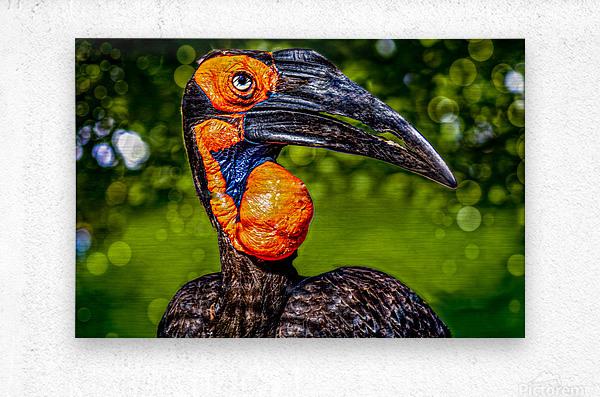 Ugly Bird  Metal print