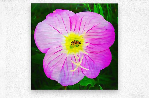 lady bug flower  Metal print