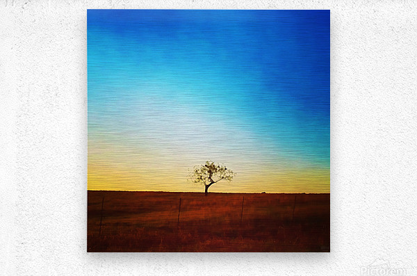 solitude tree  Metal print