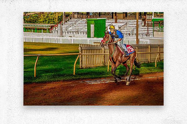 Racehorse02  Metal print