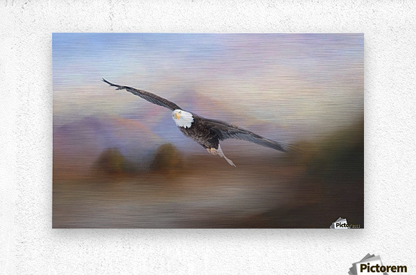With the Winds  Metal print