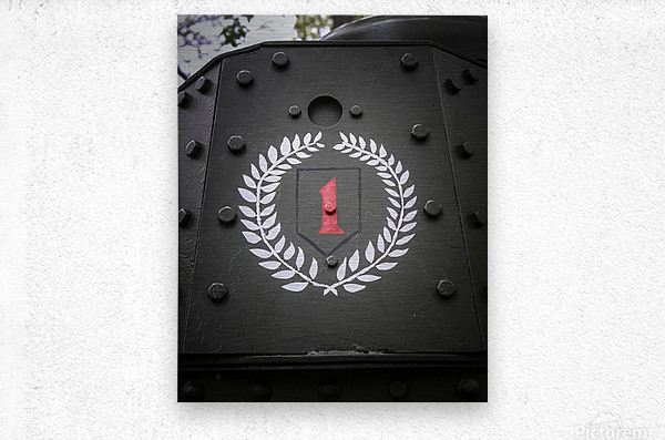 The first Division  Metal print