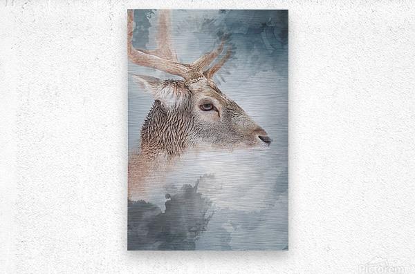 Cerf   Metal print