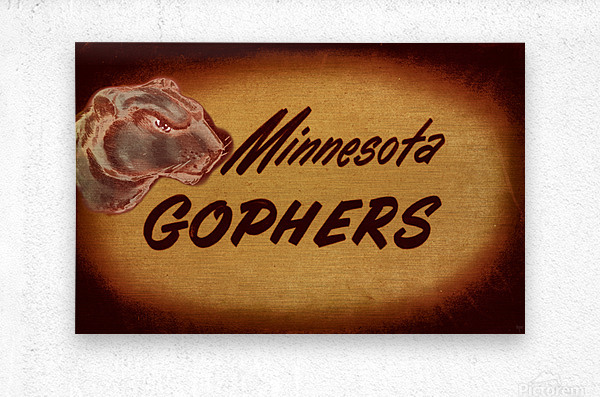 1950 Vintage Minnesota Golden Gopher Art  Metal print