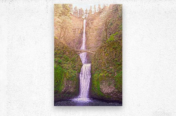 Multnomah Falls Bathed in Sunlight   Columbia River Gorge National Scenic Area   Oregon Pacific Northwest  Metal print