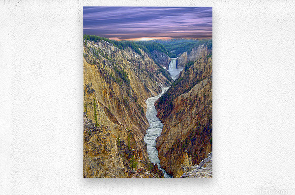 Grand Canyon of Yellowstone - The Falls and River in the Fading Light of Day  Yellowstone National Park at Sunset  Metal print