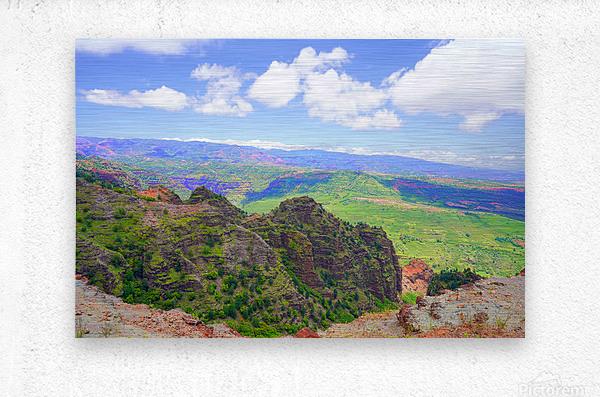 Waimea Canyon Area in the Puu Ka Pele Forest Reserve on the Island of Kauai Hawaii  Metal print