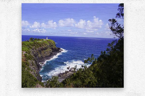 Spring at Kilauea Lighthouse on the Island of Kauai  Metal print