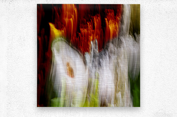walk down Limited Edition of 5  Metal print