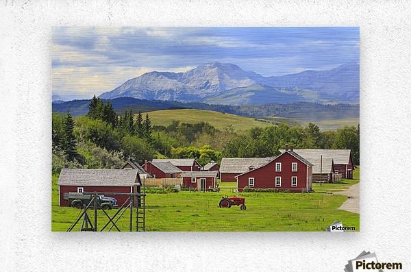 Bar U Ranch National Historic Site; Longview, Alberta, Canada  Metal print