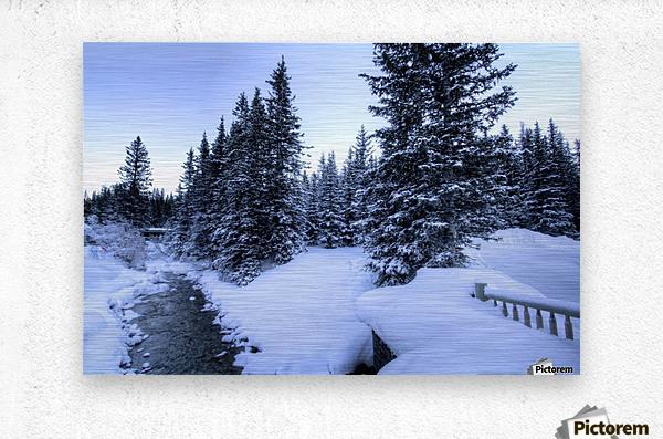 Snowy crossing  Metal print