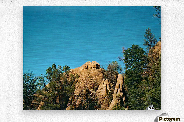 A Rock Hill  Metal print