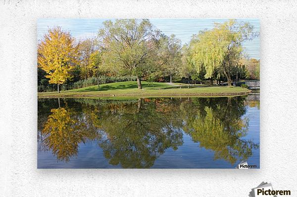 Tree reflection  Metal print