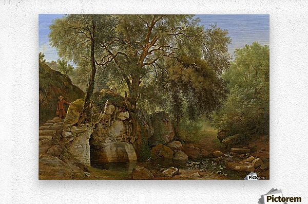 View in the Park of the Villa Chigi at Ariccia  Metal print