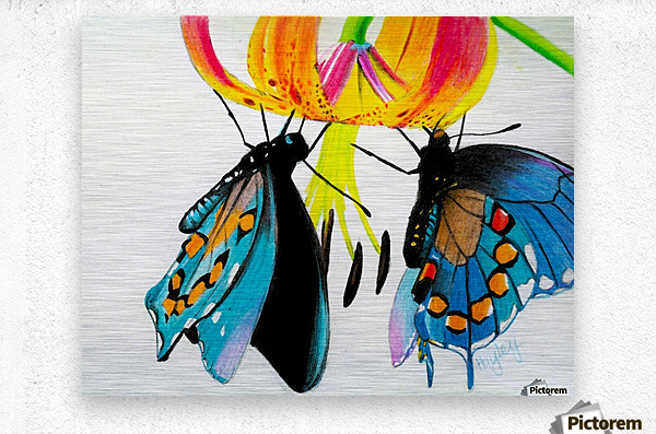 Butterflies and Lily  Metal print
