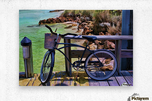 beach  bike   Metal print