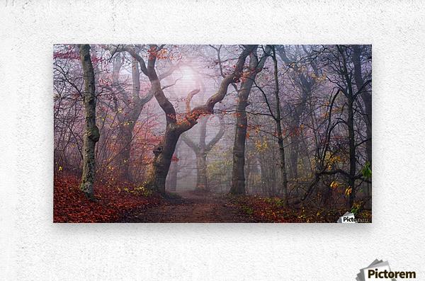 Walking the old path.  Metal print
