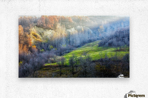 November colors  Metal print