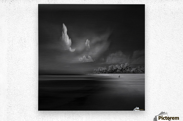 Sea Shore View  Metal print