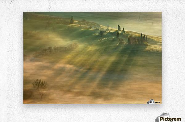 Mist...  Metal print