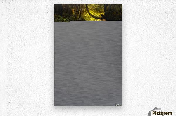 Land of Xanes  Metal print