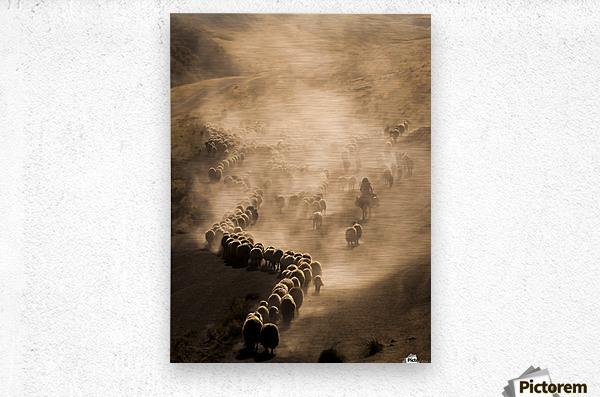 Tozlu Yolculuk  Metal print
