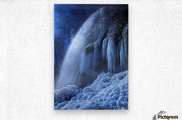 Frozen in the moonlight  Metal print