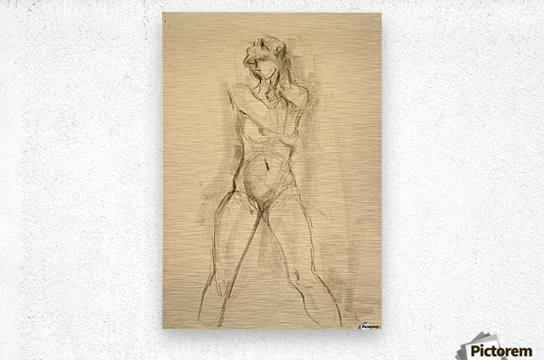 Female Nude Study  Metal print