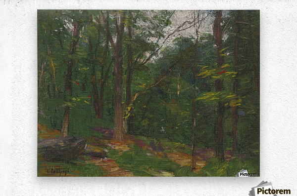 Forest in the spring  Metal print