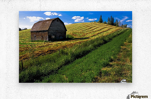 Old Barn In A Field  Metal print
