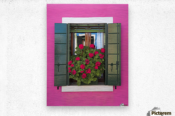 Pink Wall And Green Shutters, Burano, Italy  Metal print