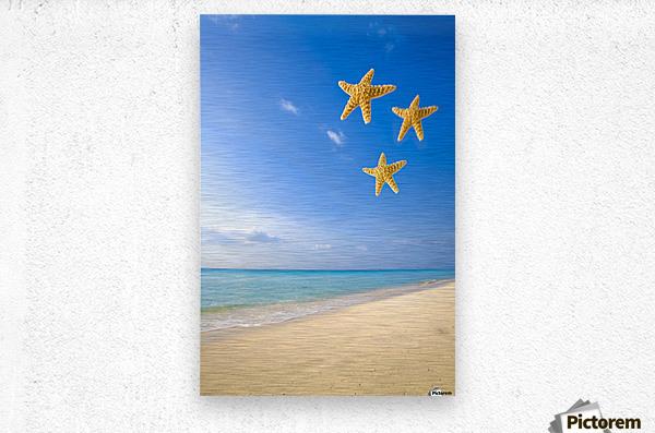 Starfish Falling In Front Of The Ocean  Metal print