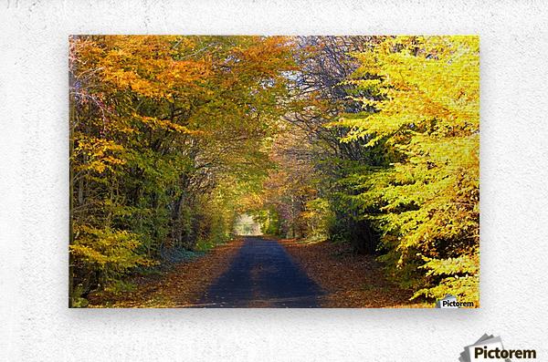 Rural Road, Argyll And Bute, Scotland  Metal print