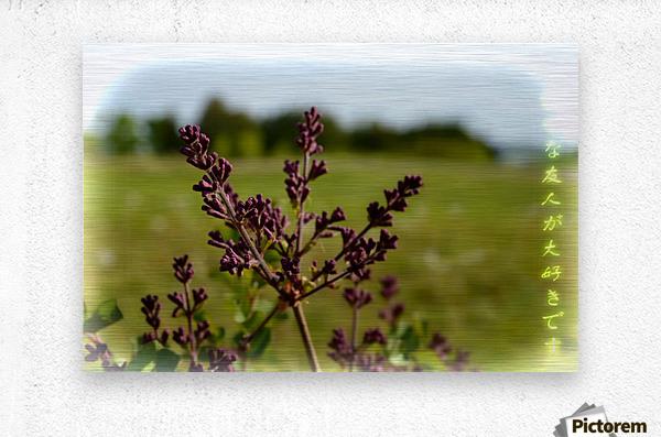 Flowers  Impression metal