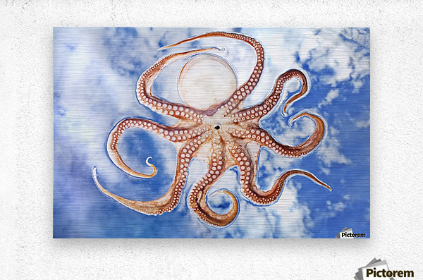 An octopus with blue sky and cloud in the background  Metal print