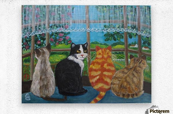 cats in window  Metal print