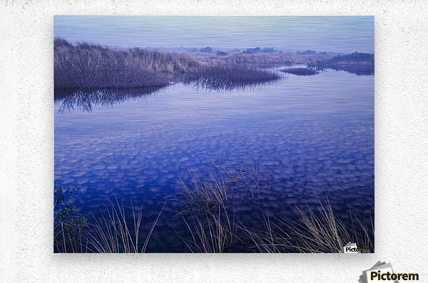 Clouds reflected in the deflection plain; Lakeside, Oregon, United States of America  Metal print