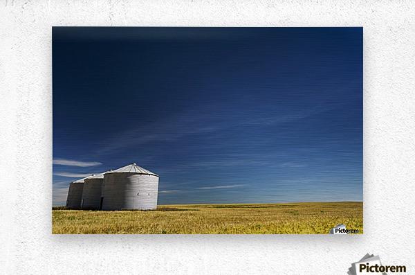 Large metal grain bins in a barley field with blue sky and wispy clouds; Acme, Alberta, Canada  Metal print
