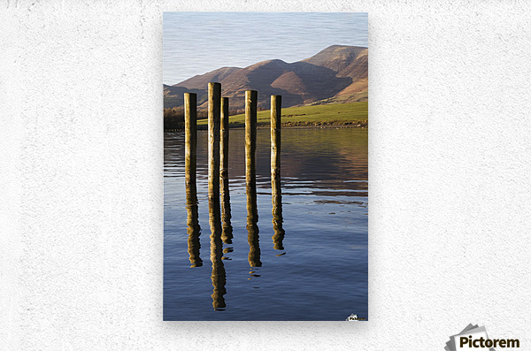Wooden posts reflected in tranquil after with mountains the the background; Keswick, Cumbria, England  Metal print