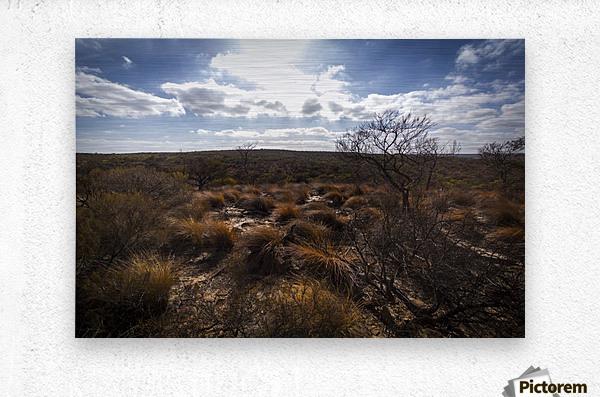 Kalbarri Canyon  Impression metal