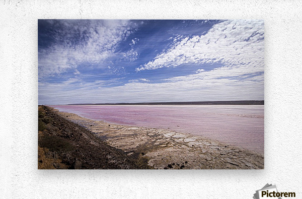Pink Lake  Impression metal