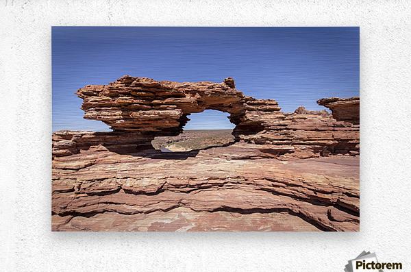 Natures Window  Metal print