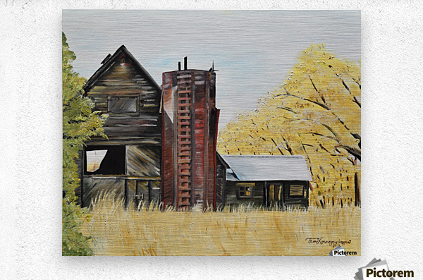 Golden Aged Barn -Washington - Red Silo   Metal print