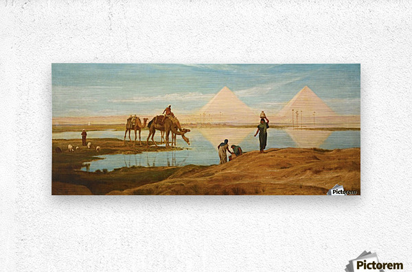 People and camels by the pyramids  Metal print